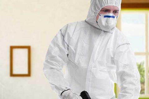 مكافحة الحشرات ورش مبيدات فى الرياض